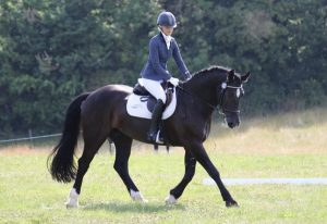 Sophie competing with one of her own horses at Rugby Riding Club