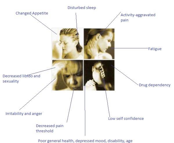 Chronic pain image